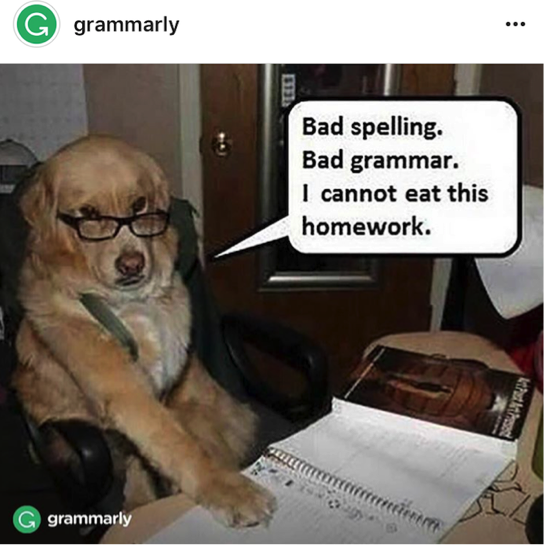 Grammarly on Instagram